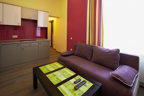 2-комнатная квартира посуточно в Львове. Франковский район, ул. Федьковича, 33. Фото 1