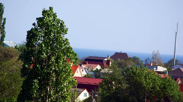 1-комнатная квартира посуточно в Одессе. Суворовский район, Одесса, Днепропетровская дорога, 70, 70, 70. Фото 1
