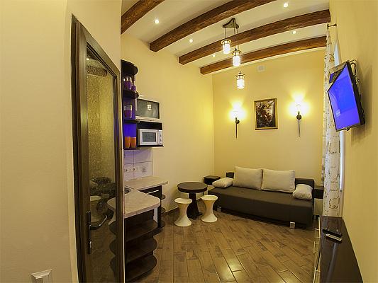 1-комнатная квартира посуточно в Львове. Галицкий район, ул. Пантелеймона Кулиша, 13. Фото 1