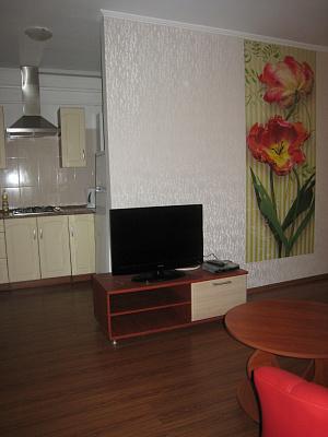 1-комнатная квартира посуточно в Днепропетровске. Бабушкинский район, ул. В. Мономаха (Московская), 27. Фото 1