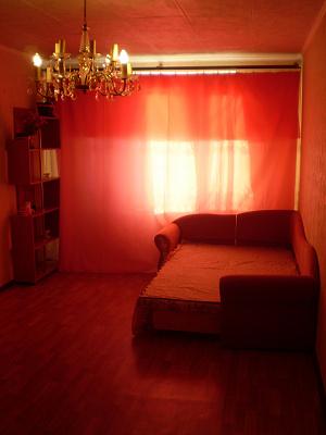 1-комнатная квартира посуточно в Киеве. Днепровский район, б-р Давыдова, 14. Фото 1