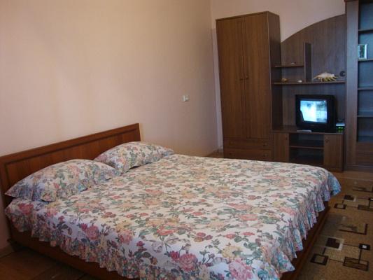 1-комнатная квартира посуточно в Черновцах. Первомайский район, ул. Главная, 279. Фото 1