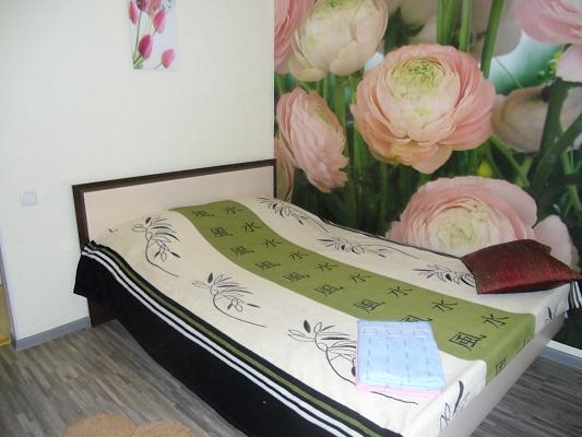 1-комнатная квартира посуточно в Одессе. Приморский район, ул. Екатериненская, 49. Фото 1