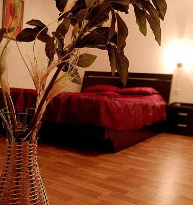 1-комнатная квартира посуточно в Одессе. Приморский район, ул. Преображенская, 21. Фото 1