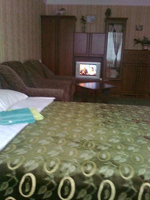1-комнатная квартира посуточно в Киеве. Голосеевский район, ул. Горького, 99. Фото 1