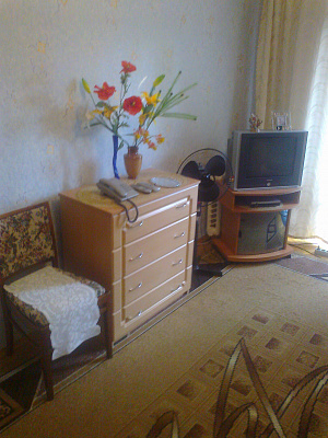 2-комнатная квартира посуточно в Киеве. Шевченковский район, проспект победы 21, 21. Фото 1
