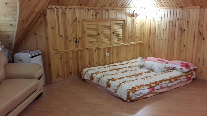 1-комнатная квартира посуточно в Крыжановке. ул. Южная, 111. Фото 1