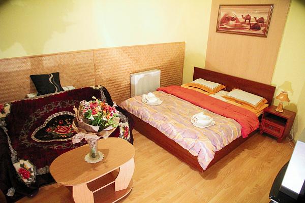 1-комнатная квартира посуточно в Львове. Галицкий район, ул. Николая Вороного, 5. Фото 1