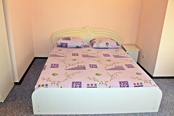 2-комнатная квартира посуточно в Одессе. пер. Педагогический, 3/2. Фото 1