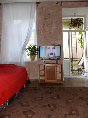 1-комнатная квартира посуточно в Одессе. Приморский район, ул. Нежинская, 51. Фото 1