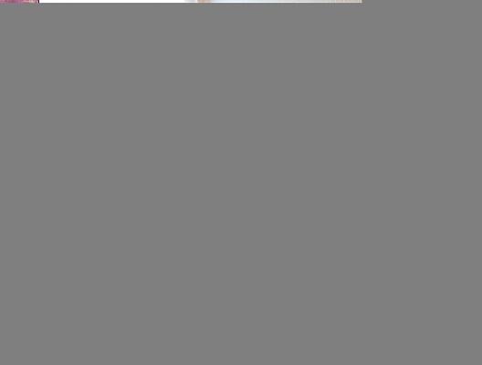 2-комнатная квартира посуточно в Киеве. Подольский район, ул. Набережно-Крещатицкая , 11. Фото 1