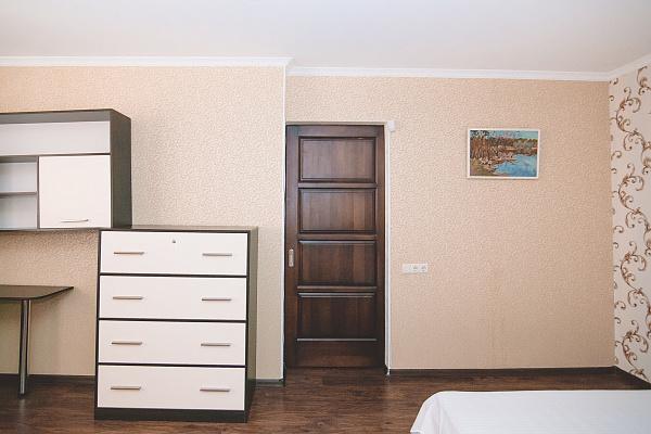 1-комнатная квартира посуточно в Сумах. Ковпаковский район, ул. Ильинская, 10. Фото 1