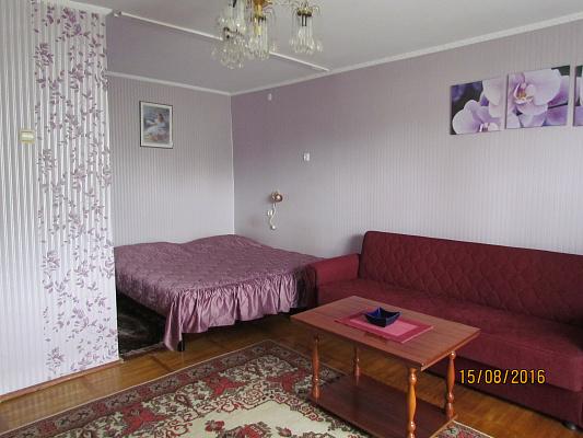 1-комнатная квартира посуточно в Ужгороде. ул. Железнодорожная, 4/22. Фото 1