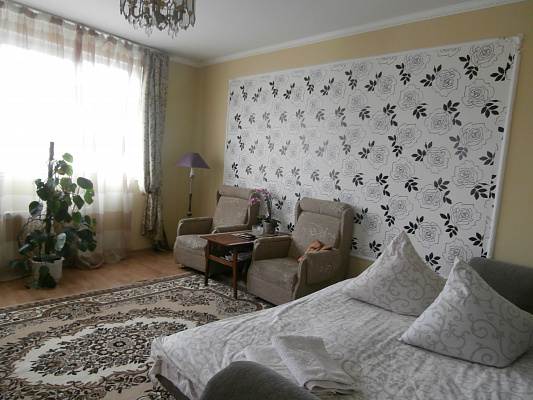 1-комнатная квартира посуточно в Львове. Сыховский район, ул. Манастырского, 2. Фото 1