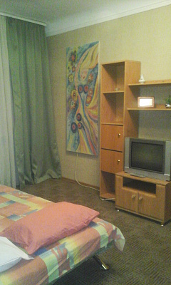 1-комнатная квартира посуточно в Полтаве. Октябрьский район, ул. Небесной Сотни, 6. Фото 1