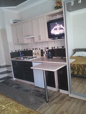 1-комнатная квартира посуточно в Моршине. ул. 50-летия УПА, 5. Фото 1