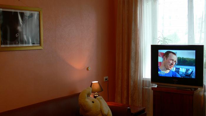 1-комнатная квартира посуточно в Бердичеве. ул. Новоивановская, 36. Фото 1