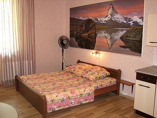 1-комнатная квартира посуточно в Киеве. Голосеевский район, ул. Трутенко, 3. Фото 1