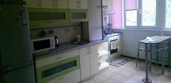 1-комнатная квартира посуточно в Днепропетровске. Крутогорный спуск (ул. Рогалева), 21. Фото 1