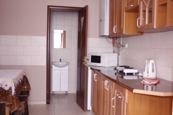 1-комнатная квартира посуточно в Мукачево. ул. Воссоединение, 36. Фото 1