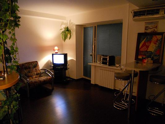 1-комнатная квартира посуточно в Киеве. Голосеевский район, Жилянская, 69/71. Фото 1