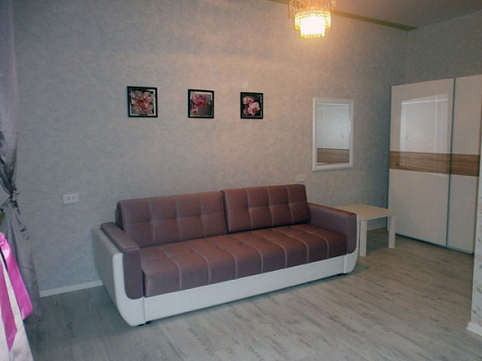 1-комнатная квартира посуточно в Днепропетровске. Октябрьский район, ул. Баумана, 3. Фото 1