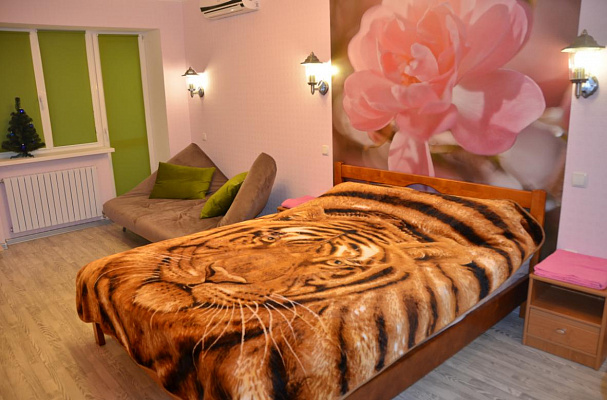 1-комнатная квартира посуточно в Днепропетровске. ул. Резничная, 9. Фото 1