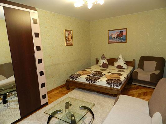 1-комнатная квартира посуточно в Запорожье. Жовтневый район, ул. Почтовая, 169. Фото 1