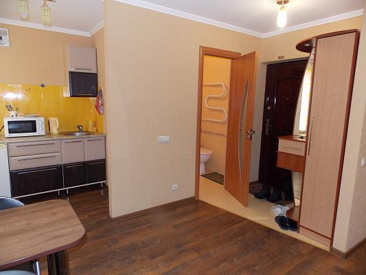 1-комнатная квартира посуточно в Виннице. Старогородский район, Островского, 1. Фото 1