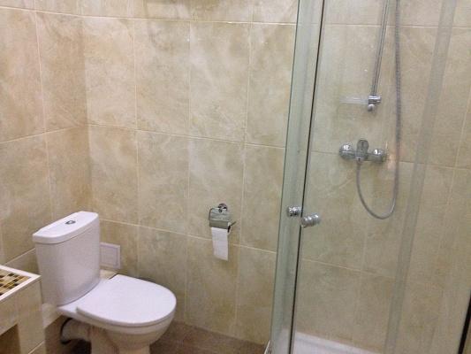 1-комнатная квартира посуточно в Донецке. Куйбышевский район, Дубравная , 211. Фото 1