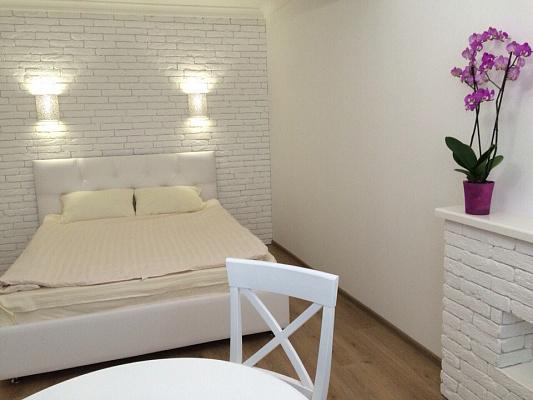 1-комнатная квартира посуточно в Ирпене. ул. Выговского (Суворова), 10. Фото 1
