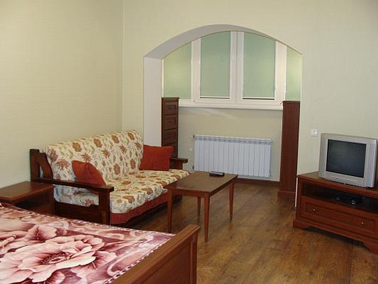 1-комнатная квартира посуточно в Ирпене. ул. Университетская (Карла Маркса), 6. Фото 1