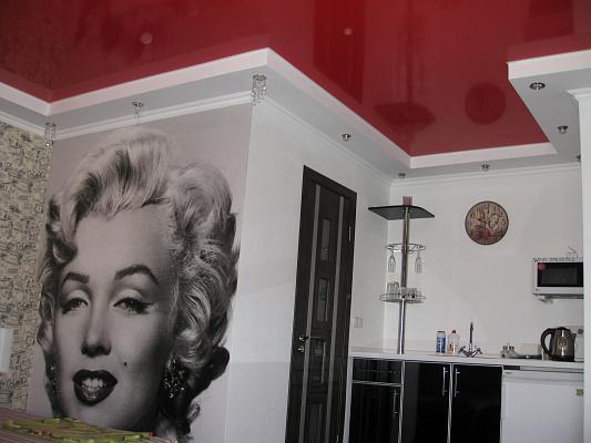 1-комнатная квартира посуточно в Чернигове. Новозаводской район, ул. Малясова, 19. Фото 1