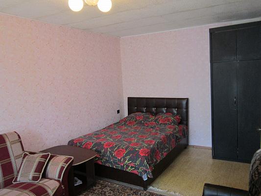 1-комнатная квартира посуточно в Днепропетровске. Октябрьский район, пр-т Гагарина, 97. Фото 1