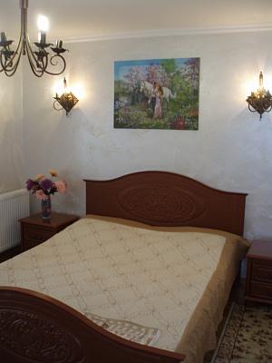 1-комнатная квартира посуточно в Ивано-Франковске. ул. Украинских Декабристов, 52. Фото 1