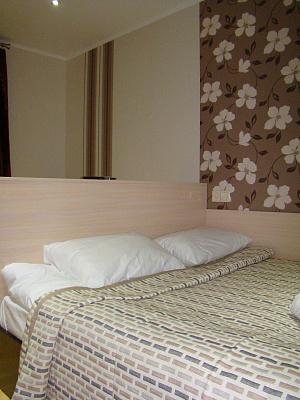 1-комнатная квартира посуточно в Киеве. пер. Голосеевский, 5. Фото 1