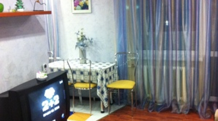 1-комнатная квартира посуточно в Донецке. Киевский район, Артёма, 142. Фото 1