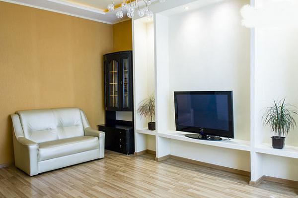 2-комнатная квартира посуточно в Харькове. Киевский район, ул. Пушкинская, 54. Фото 1