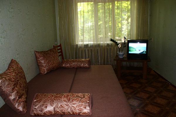 1-комнатная квартира посуточно в Артемовске. ул. Независимости (Советская), 29. Фото 1