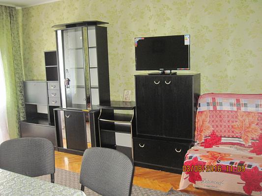 1-комнатная квартира посуточно в Виннице. Ленинский район, ул. Пирогова, 11. Фото 1
