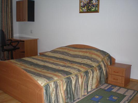 2-комнатная квартира посуточно в Ужгороде. ул. Владимирская, 28. Фото 1