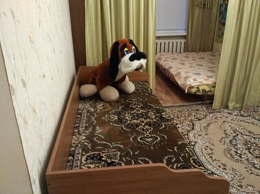 1-комнатная квартира посуточно в Полтаве. Октябрьский район, ул. Баленко, 2. Фото 1
