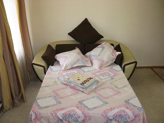 1-комнатная квартира посуточно в Киеве. Голосеевский район, ул. Большая Васильковская, 114. Фото 1