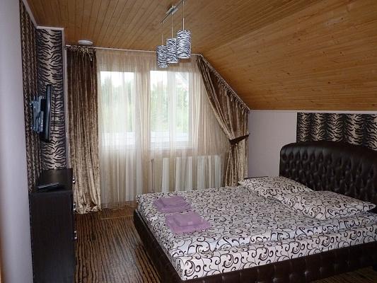 2-комнатная квартира посуточно в Ужгороде. ул. Невицкой. Фото 1